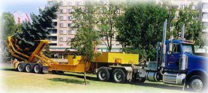 Spruce Hill Tree Movers | Alberta's BIG tree movers!